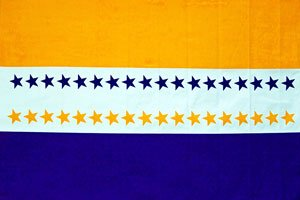 19th Amendment Victory Flag